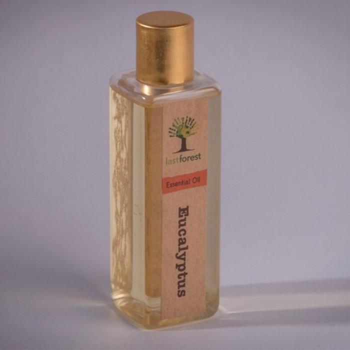 Last forest Eucalyptus Essential Oil 100ml