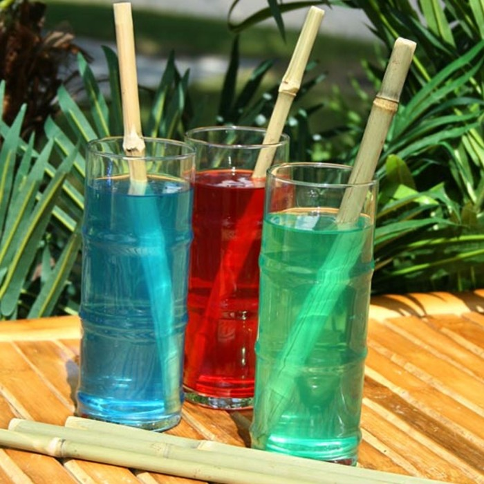 Golisoda - Bamboo Straws - Set of 6 - Eco-friendly / Washable / Reusable