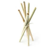 Golisoda - Bamboo Straws - Set of 6 - Eco-friendly / Washable / Reusable