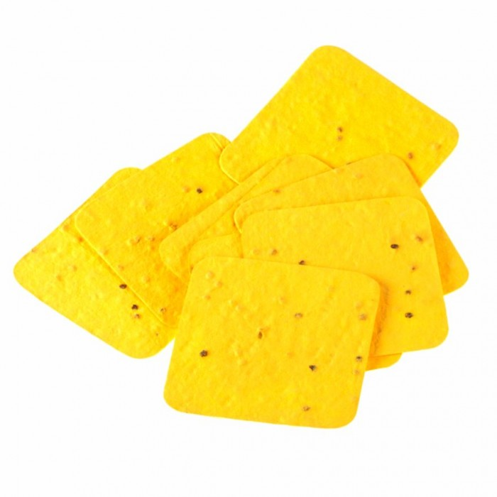 Jalebi Grow Me Plantable Shape Cards Squaree Pack Of 10 - Handmade Paper With Live Organic Tomato Seeds.