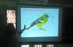 Beginners Guide to Bird Watching @ Goli Soda