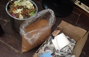 Composting for young adults: